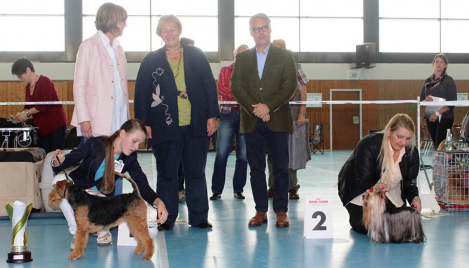 Klub für Terrier, Ortsgruppe Merchweiler – Saarbrücken